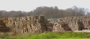 Les avantages du bois de chauffage ONF Énergie Bois