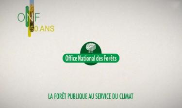 foret-publique-service-climat-7