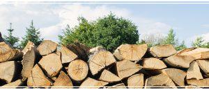 Un bois de chauffage économique et responsable