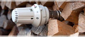 Le chèque énergie peut aider à payer le bois de chauffage