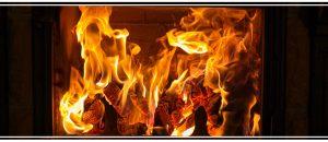 Comment bien choisir votre bois de chauffage ?