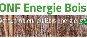 ONF Energie Bois dans Habitat Naturel