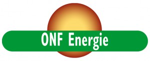 Logo ONF Energie