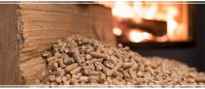 Qu'est-ce que le bois énergie ?