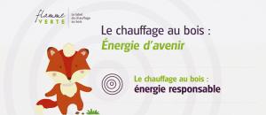 """Flamme Verte : """"Le chauffage au bois – Énergie d'avenir"""""""