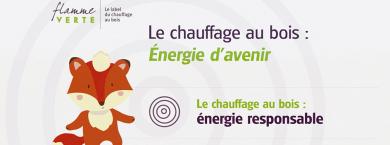 """Flamme Verte : """"Le chauffage au bois - Énergie d'avenir"""""""