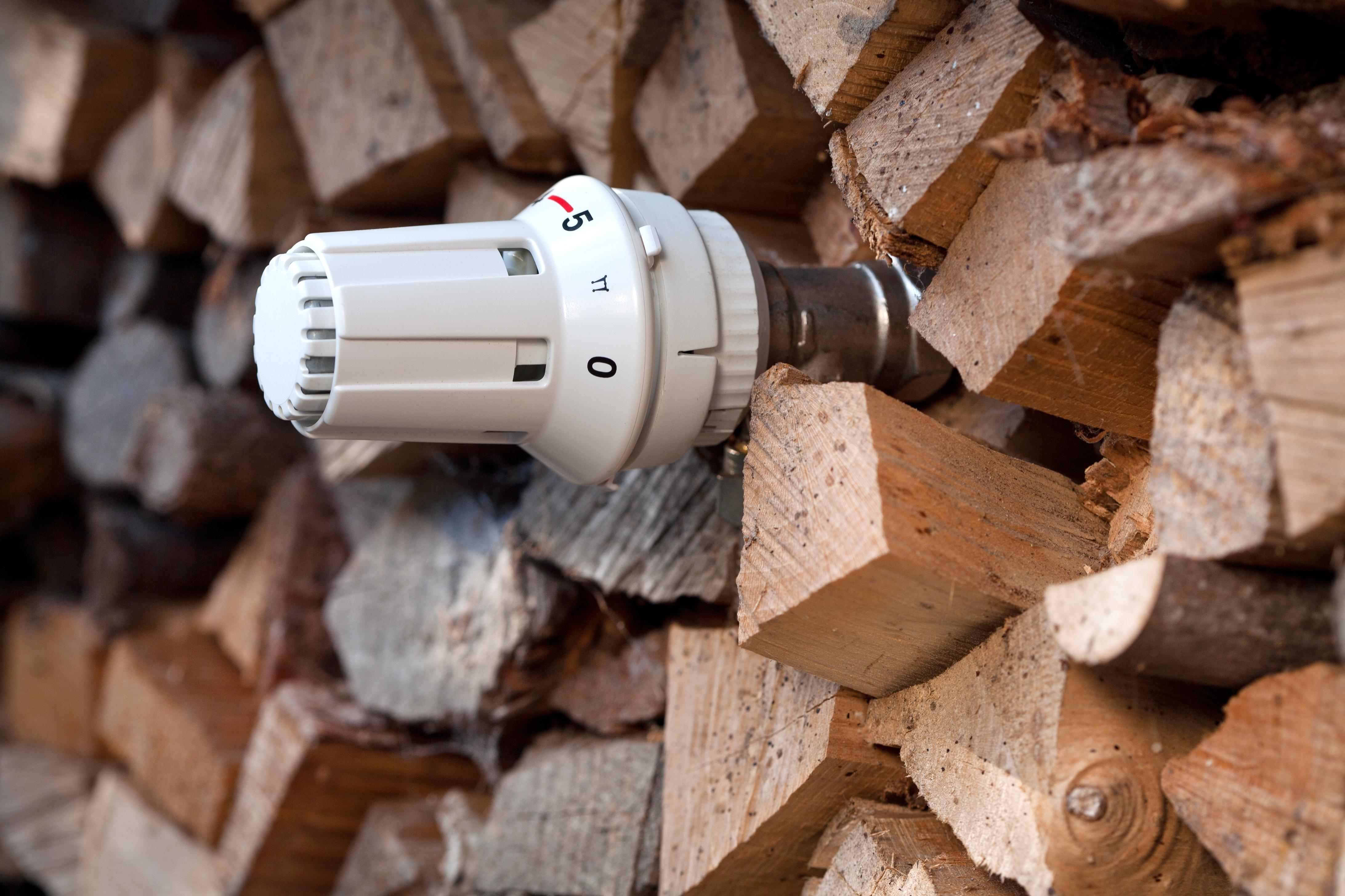 le ch que nergie peut aider payer le bois de chauffage onf energie bois. Black Bedroom Furniture Sets. Home Design Ideas