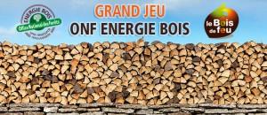 Résultats Jeu Concours ONF Energie Bois
