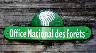 Onf energie bois vente de bois de chauffage - Office national des forets ...